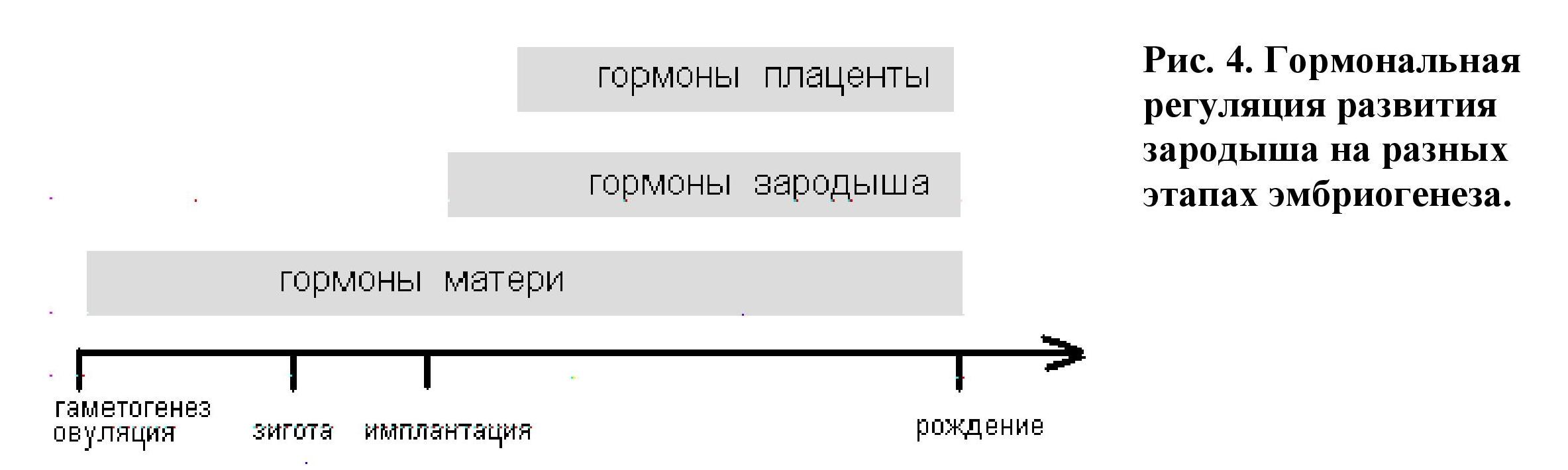 Тератоген
